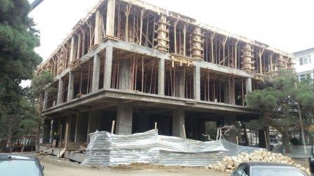 ETSN SUSUR:Nəsimi rayonunda tikinti şirkətlərinin ağac soyqırımı-FOTOLAR